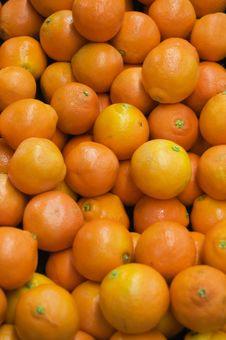 Free Orange Stock Photo - 6031420