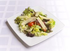 Salad With Cheese And Vegetables Stock Image