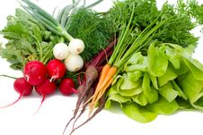 Free Set Of Vegetables Stock Photos - 6033343