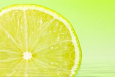 Fresh Sliced Lime Royalty Free Stock Photo