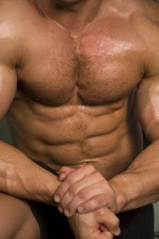 Free Close-up Of An Athletic Torso Stock Photography - 6035632