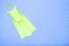 Free Pool Royalty Free Stock Photo - 6039375