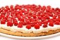 Free Raspberry Tart Stock Image - 6042951