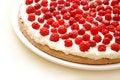 Free Raspberry Tart Stock Image - 6042991