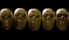 Free Row Of Skulls Royalty Free Stock Photo - 6040085