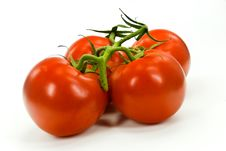 Free A Stack Of Tomatoes  On White Background Royalty Free Stock Photos - 6040588