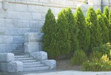 Free Stone Stairs And Trees Stock Photos - 6041233