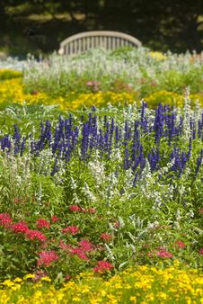 Free Park Full Of Flowers Royalty Free Stock Photos - 6041348
