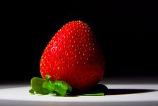 Lucious, Ripe, Red , Juicy Strawberry Royalty Free Stock Photography