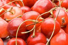 Free Fresh Cherry Stock Photo - 6042650