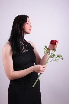 Free Woman With Rose Royalty Free Stock Photos - 6044578