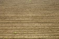 Soil Texture Stock Image