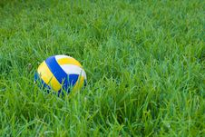 Free Ball On The Grass Royalty Free Stock Photo - 6047065