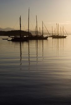 Free Boats Anchored At Dusk Royalty Free Stock Image - 6049236