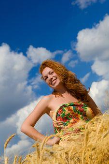 Free Golden Beauty Stock Photos - 6049403