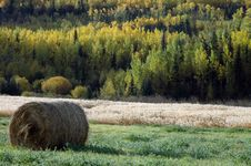 Free Hayroll In Fall Royalty Free Stock Images - 6051339