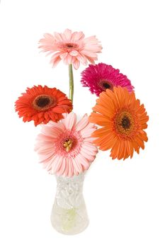 Free Bouquet Of Gerberas Stock Photo - 6051670