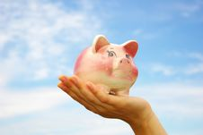 Free Piggy Bank In Hand Royalty Free Stock Photo - 6051835