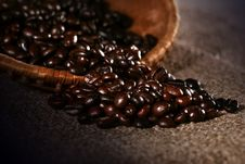 Free Coffee Bean Royalty Free Stock Photography - 6052227