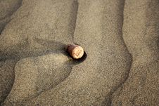 Free CORK IN SAND Royalty Free Stock Photography - 6053397
