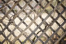 Free Outside Of  Wooden Fence Stock Photos - 6056713