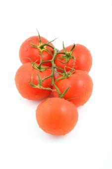 Free Tomato- Big Royalty Free Stock Image - 6058786