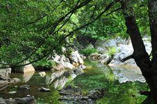 Free Lake Royalty Free Stock Photos - 6059368