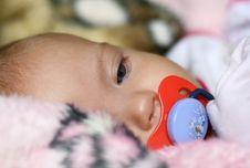 Free Newborn Girl Royalty Free Stock Photos - 6059678