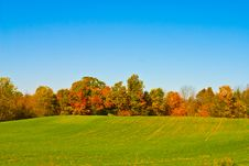 Free Fall In Canada Royalty Free Stock Photography - 6059797
