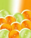 Free Orange 01 Stock Image - 6066001