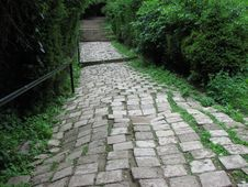 Free Pathway Royalty Free Stock Images - 6060249