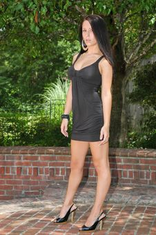 Free Dressed To Kill Stock Image - 6060601