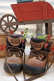 Free Potted Boots Stock Image - 6060731