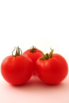 Free Three Tomatoes On White Stock Photography - 6061922