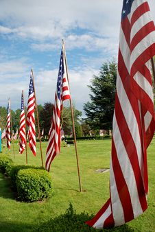 Free Field Of Flags - Vertical Stock Image - 6062861