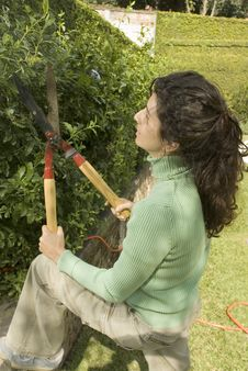 Free Woman Trimming A Hedge - Vertical Stock Images - 6062984