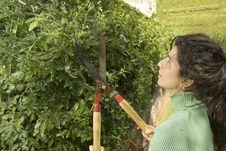 Free Woman Trimming Shrub - Horizontal Royalty Free Stock Photos - 6063058