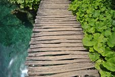 Free Plants, Water And Wooden Bridge Stock Photos - 6064593