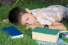 Free The Sleeping Student Royalty Free Stock Photos - 6064758