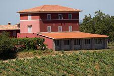 Free Mason In Tuscany Royalty Free Stock Photo - 6064775