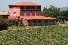 Free Mason In Tuscany Royalty Free Stock Photo - 6064785