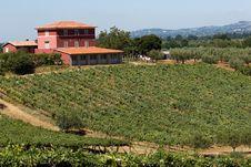 Free Mason In Tuscany Stock Photography - 6064792