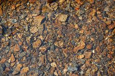 Free Stones In Water. Wet River Rocks Stock Photos - 6066663