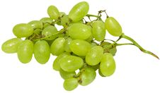 Free Green Grapes Royalty Free Stock Photography - 6067837