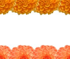 Free Frame From Beautiful Orange Stock Image - 6067841