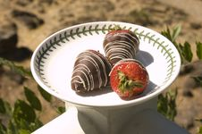 Free Chocolate Cover Strawberries On A Plate Stock Photos - 6067863