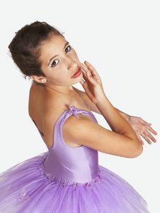 Free Standing Young Ballarina In Purple Tutu Stock Image - 6068491