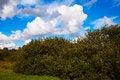 Free Cloud Landscape Stock Photo - 60681250