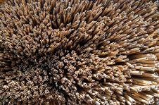 Free Straw Background Stock Photo - 6071080