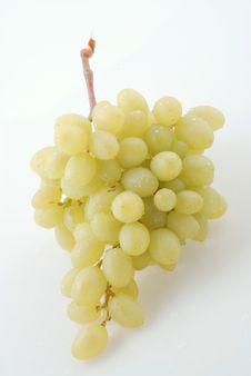 Free Grape Stock Photos - 6071353